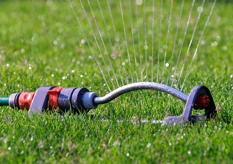 Home Lawn Watering Guide Keep Grass Alive In Missouri Summers
