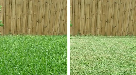 Aeration Get Your Lawn Breathing This Spring